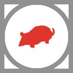 KAONET-icon-taupe